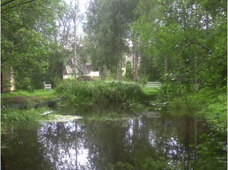 фото 4. Поэзия дачной усадьбы. Деревня Хязельки. 2013 год.