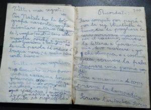 Фото5 Две страницы дневника
