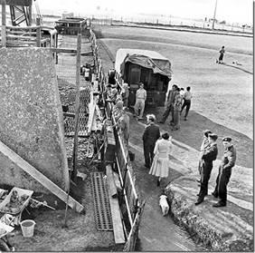 Реконструкция» Стоунхенджа 1958-1964 годы.